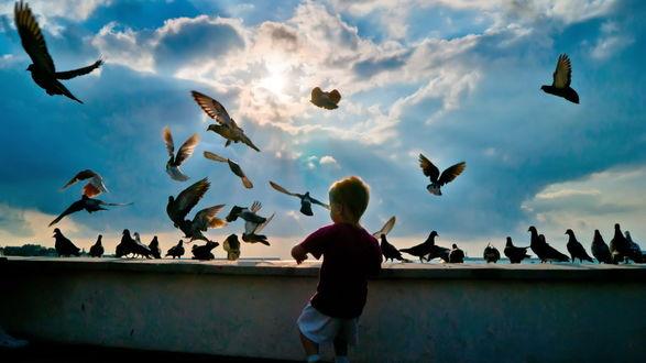 Обои Мальчик гоняет голубей на фоне солнца пробивающегося сквозь красивые облака