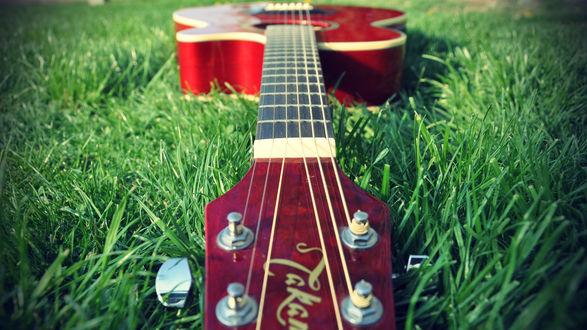 Обои Красная гитара Takamine лежит на траве