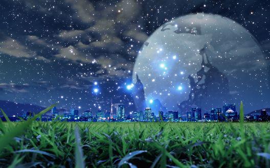 Обои Вид из травы, ночной город в сказочных огнях на небе огромная луна
