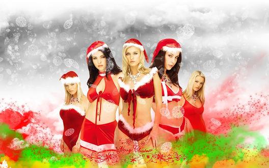 Обои Пять девушек в эротических новогодних нарядах выстрились в очередь за подарками