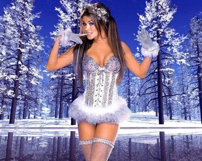 Обои Кармен Электра / Carmen Electra одета в сексуальную снегурочку