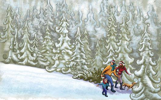 Обои Семья и их верный пес возвращаются из леса со своей рождественской добычей - елкой