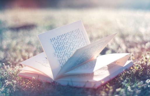Обои Книга лежит на траве под лучами солнца