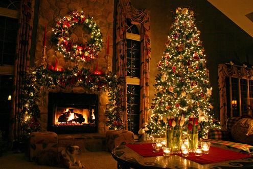 Обои Высокая елка в гостиной у камина, над которым висит украшенный гирляндами венок, на столе среди свечей стоят свежие тюльпаны