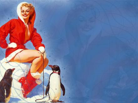 Обои Рождественская открытка с девушкой и пингвинами