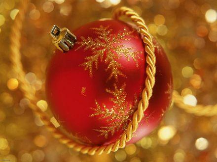 Обои Красный елочный шарик и золотистая веревочка