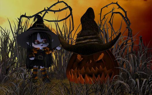 Обои Маленькая злая ведьмочка с огромной тыквой Джека готовы к Хэллоуину