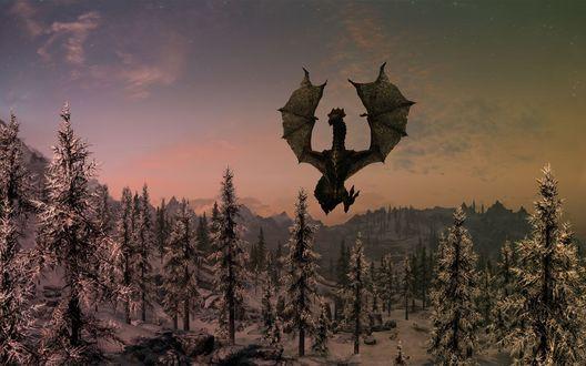 Обои Чёрный  дракон взлетел над могилой в ельнике