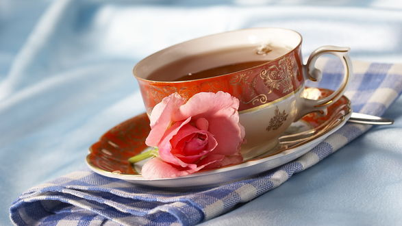 Обои Чашка с чаем и розовой розой стоит на бело-голубом полотенце