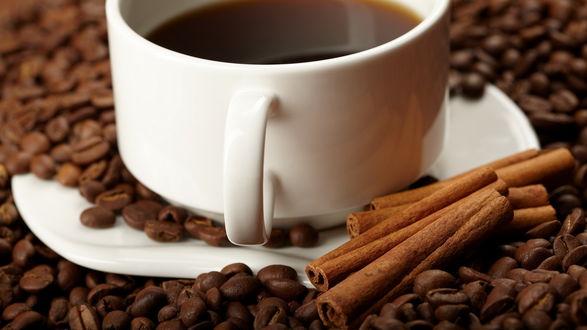 Обои Чашка с горячим кофе и палочками корицы