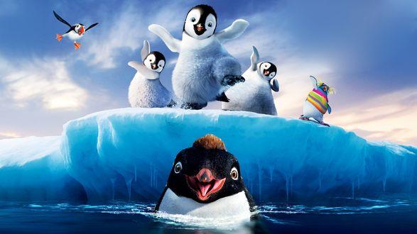 Обои Весёлые пингвины из мультфильма Happy Feet Two / Делай ноги 2