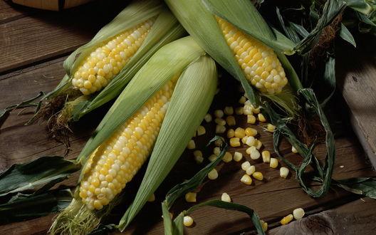 Обои Кукуруза в листьях лежит на столе