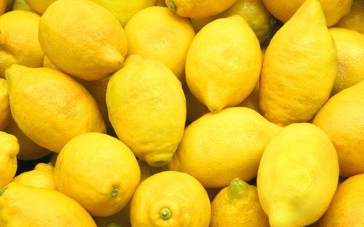 Обои Множество желтых лимонов
