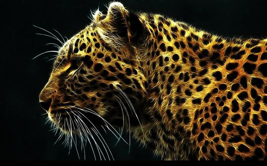 Обои Леопард соткан из световых пятен