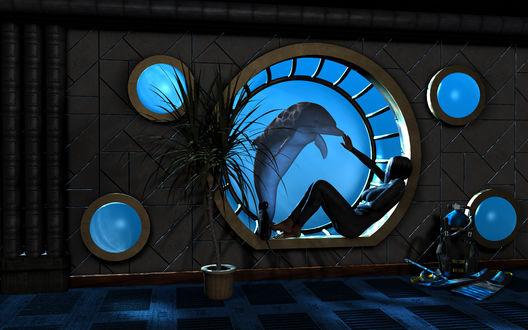 Обои Девушка - дайвер наблюдает через иллюминатор подводной станции за своим другом дельфином, рядом с ней кошка, которая тоже с любопытством наблюдает за происходящим