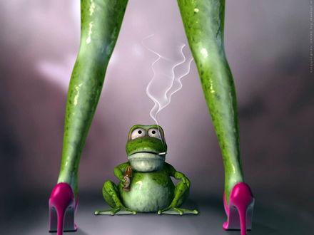 Обои Лягушка - стриптизерша в розовых туфлях соблазняет лягушку с сигаретой и пивом