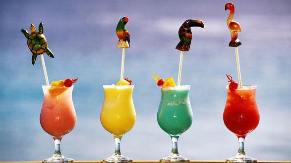 Обои Летние коктейли с трубочками в виде птиц