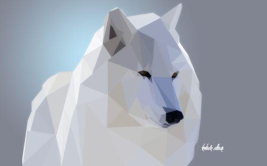 Обои Белый волк (tentacle attack)