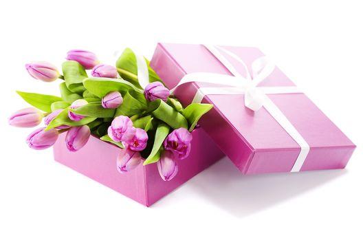 Обои Тюльпаны в подарочной упаковке