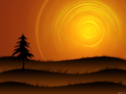 Обои Одинокая елка в степи и огромное жарящее солнце (Воропаев А.А.)