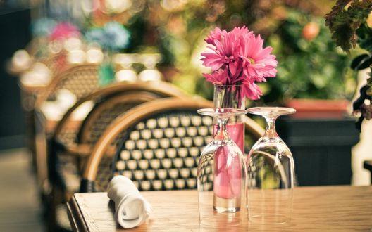 Обои Цветы стоят в вазе на столе в ресторане