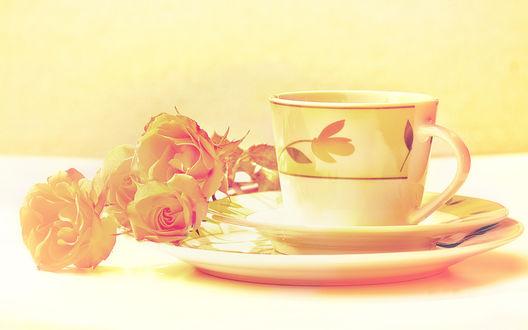 Обои Чашка с розами