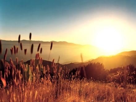 Обои Яркое солнце поднимается из-за гор