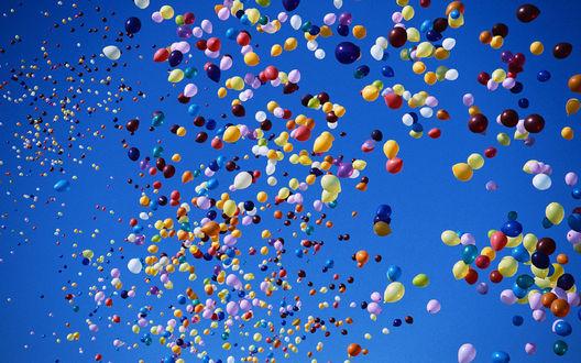 Обои Много воздушных шариков в небе