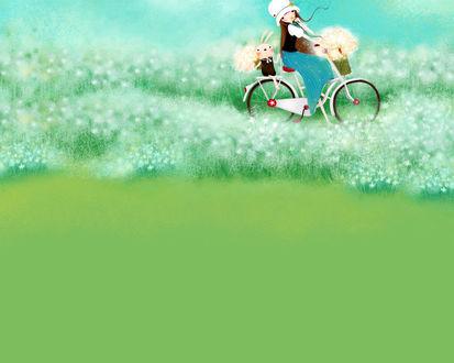 Обои Девушка с кроликом едут на велосипеде по поляне и собирают цветы