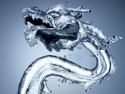 Обои Водяной дракон