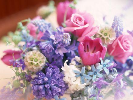 Обои Красивый букет из разнообразных цветов пастельных тонов