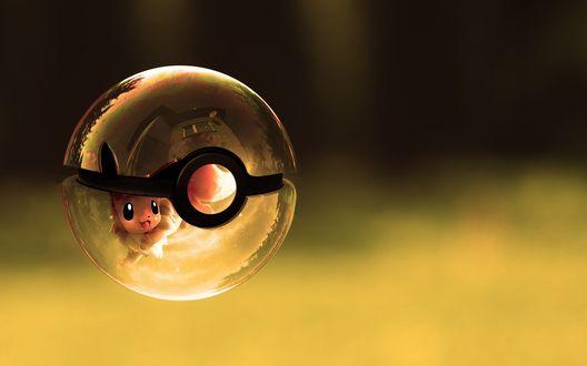 Обои Милый покемон в стеклянном покеболе, аниме Покемоны / Pokemon