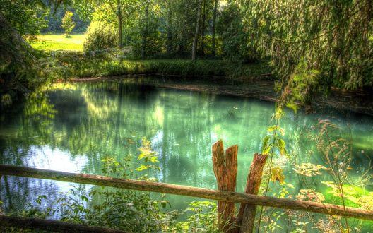 Обои Красивое озеро в лесу