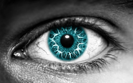 Обои Бирюзовый зрачок на белом белке глаза