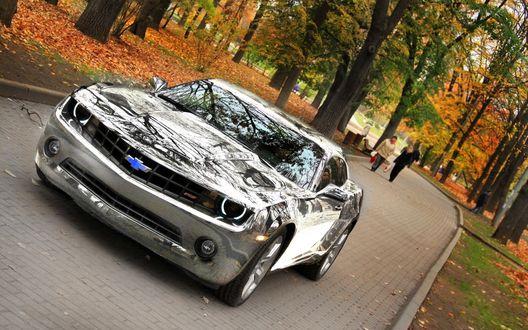 Обои Chevrolet Camaro V / Шевролет Камаро зеркальный, стоит в парке