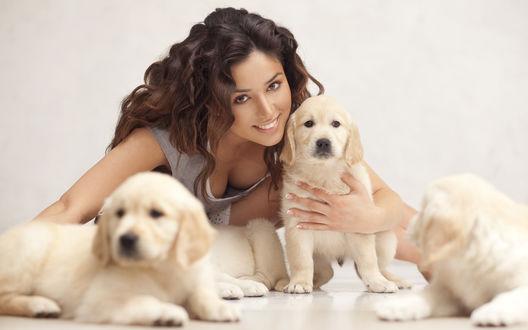 Обои Певица Злата Огневич с тремя щенками золотистого ретривера