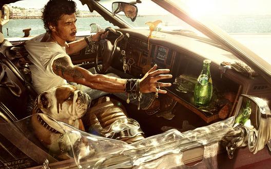 Обои Сильная жара плавит мужчину с собакой в машине, мужчина пытается дотянуться к бутылке с водой