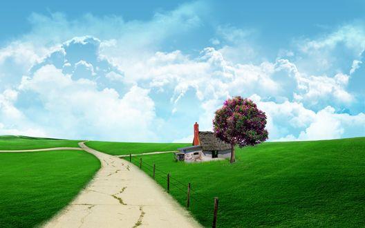Обои Заброшенный домик стоит у цветущего дерева по среди поля