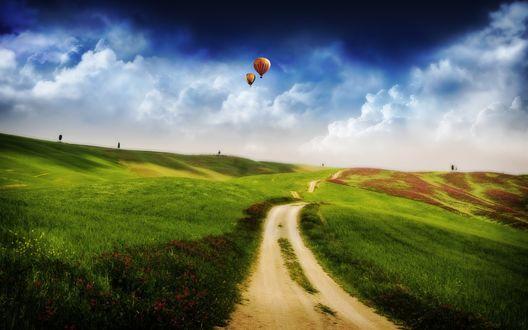 Обои Воздушные шары летают над полями