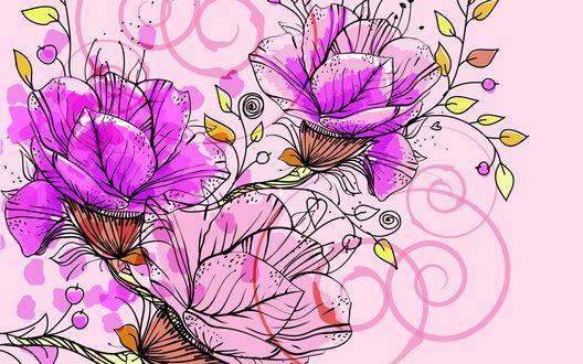 Обои Сиреневые цветы