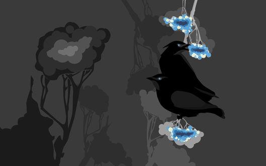 Обои Черные птицы сидят на голубой веточке