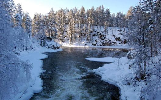 Обои Замёрзшая река глубоко в лесу
