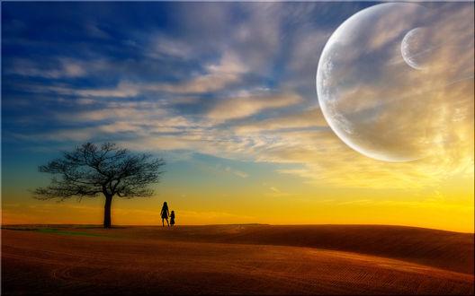 Обои Одинокое пожелтевшее дерево и два силуэта на фоне двух планет