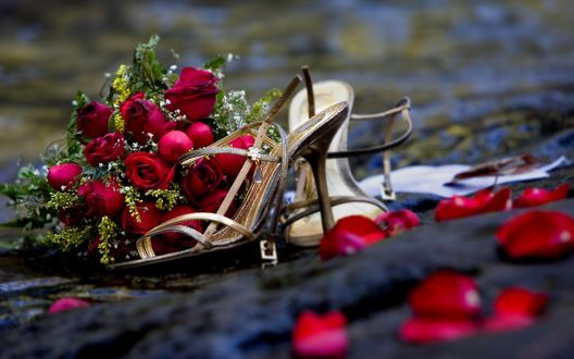 Обои Брошенный букет красных роз и туфли
