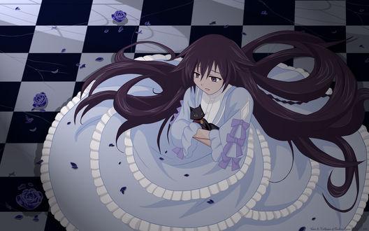 Обои Алиса с котом из аниме Сердца Пандоры / Pandora Hearts