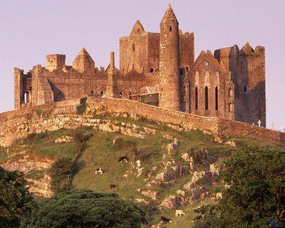 Обои Скала Кашел (Скала Св. Патрика), Южный Типперэри в Ирландии /  Ireland