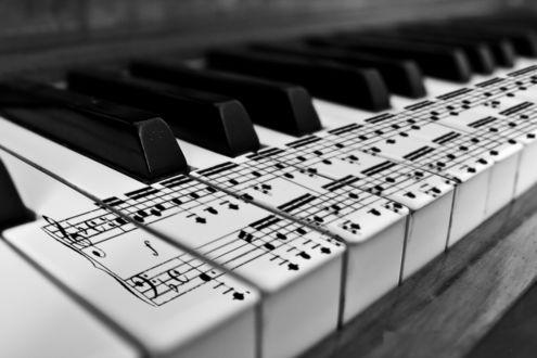 Обои Ноты на белых клавишах рояля