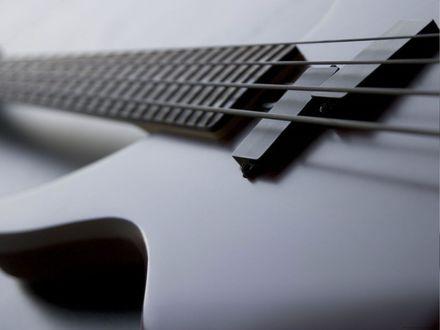 Обои Басс гитара