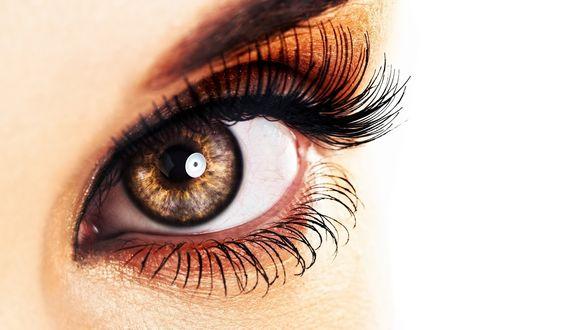 Обои Взгляд серых очаровательных глаз