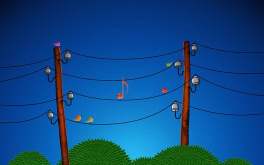 Обои Нота в образе птички на электропроводах